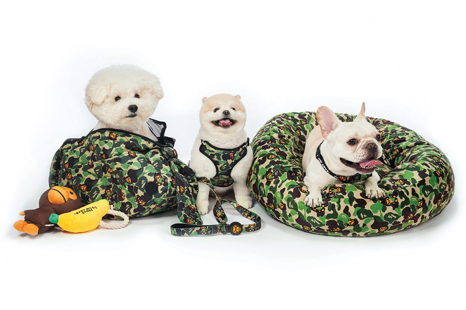 baby-milo-bape-a-bathing-ape-pet-collection-main