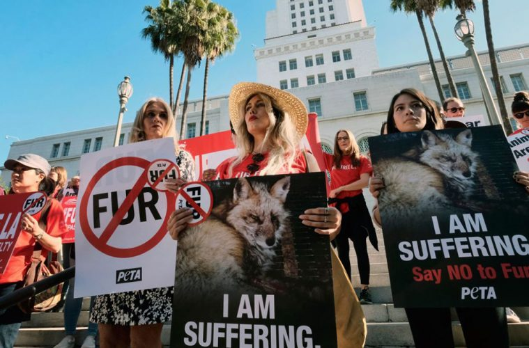 California-becomes-the-first-state-to-ban-fur-products-main
